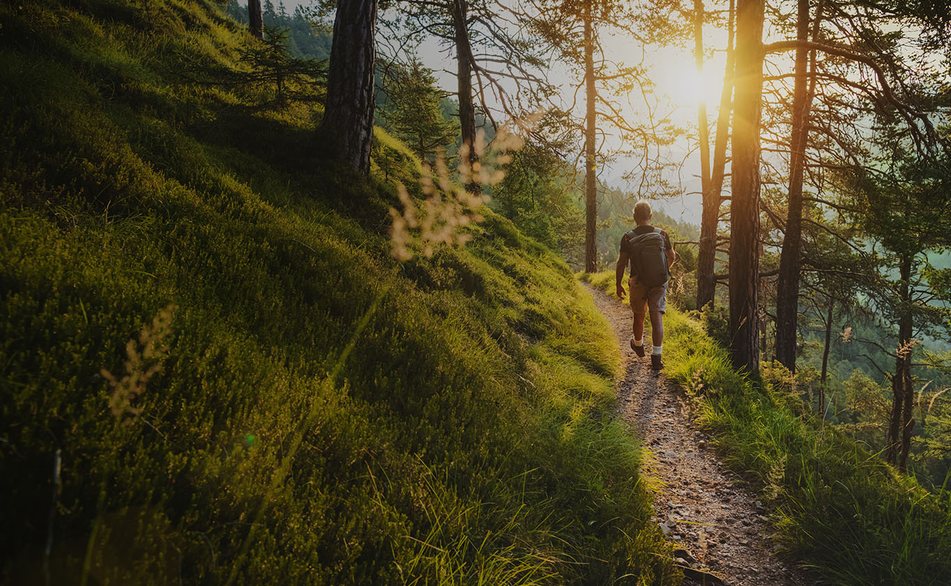Man walking down pathway in forest