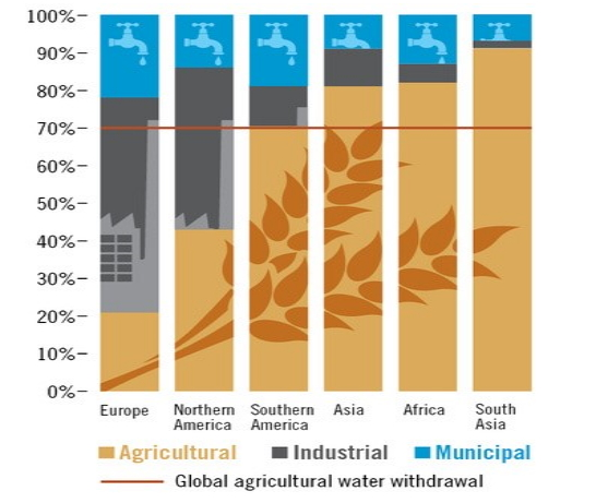 Global agricultural water withdrawal